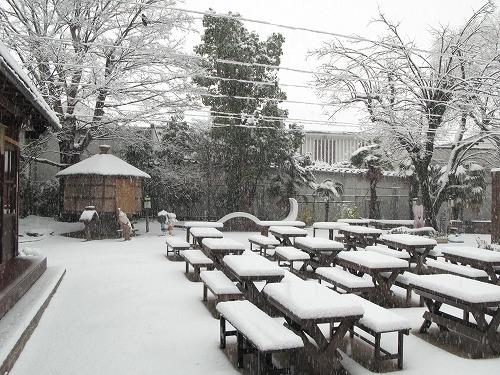 12月28日 雪
